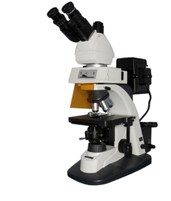 Люминесцентные микроскопы