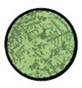 овуляционный микроскоп
